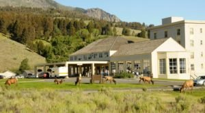 One Of The Most Famous Hotels In Yellowstone National Park Has Finally Reopened