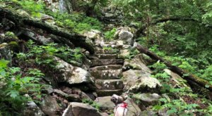 The Stairway To Nowhere Along Arkansas' Nebo Steps Trail Is A Magical Woodland Adventure