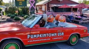 The Small Connecticut Town Of East Hampton That Transforms Into A Pumpkin Wonderland Each Year