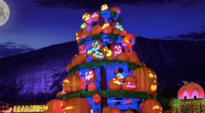 Walk Through A Village Of Thousands Of Glowing Pumpkins At Stone Mountain In Georgia