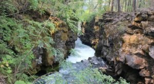 Oregon's Rogue River Gorge Is A Beautifully Brilliant Green