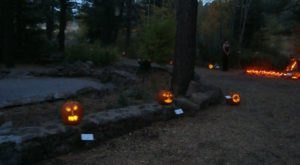 There's A Glowing Pumpkin Trail Coming To Arizona And It'll Make Your Fall Magical