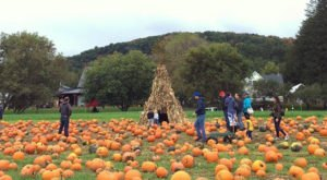 The Pumpkin Festival At Cedar Circle Farm In Vermont Is A Day Of Quirky Family Fun