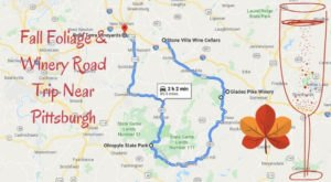 Take This Road Trip To Experience Some Of The Best Fall Foliage And Wineries Near Pittsburgh