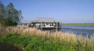 Go Glamping On The Bayou In A Charming Floating Cabin In The Middle Of The Louisiana Wetlands