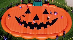 Have Some Festive Fall Fun At Waldvogel's Farm, The Largest Pumpkin Farm In Wisconsin