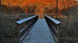 This Easy Fall Hike Near Cleveland Is Under 2 Miles And You'll Adore Every Step You Take