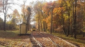 Take The National Capital Trolley Ride In Maryland To Experience The Colorful Changing Leaves