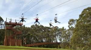 Enjoy A Sky-High Tour Of The Forest Canopy On The Zipline At Piihole Ranch In Hawaii