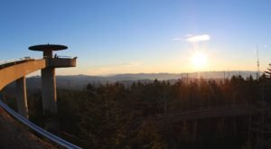 Walk The Half Mile To The Top Of Clingmans Dome In Tennessee And You Can See All The Way To North Carolina