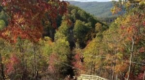 Take A Ride On The Longest Zip Line In Virginia At Hungry Mother Adventures