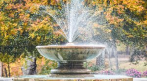 Immerse Yourself In Fall Foliage At The Cleveland Cultural Gardens