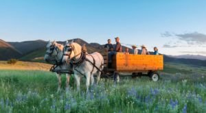 Take A Carriage Ride Through The Mountains For A Truly Unique Montana Experience