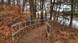 The Rachel Carson Wildlife Refuge Is The Most Peaceful Place To Experience Fall Foliage In Maine