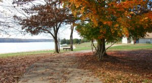 Enjoy Shoreline Views And Colorful Fall Foliage When You Visit Lake Anna State Park In Virginia