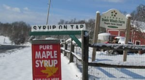Fill Up Your Own Jug With Syrup At Trade Winds Farm In Vermont