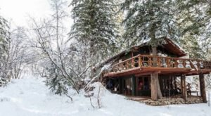 Snuggle Into A Treehouse Nestled Amongst The Trees At Utah's Sundance Resort This Winter