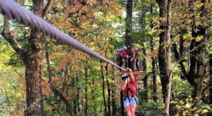 Take A Canopy Tour At Amicalola Aerial Adventure Park In Georgia To See The Best Fall Colors
