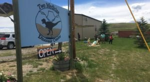Walk With The Dinosaurs At Two Medicine Dinosaur Center In Montana