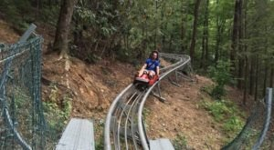 Take A Ride Through Tennessee's Fall Foliage On The Gatlinburg Mountain Coaster
