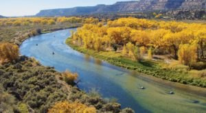 You Can't Pass Up A Trip To See New Mexico's Fall Foliage In These 7 State Parks