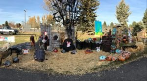 The Ammon Pumpkin Walk In Idaho Is A Classic Fall Tradition