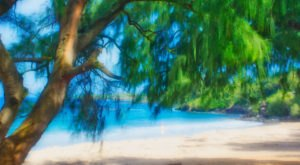 There's No Better Place For A Beach Day Than Hawaii's D.T. Fleming Beach Park