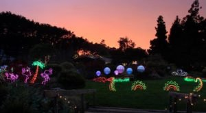 The Festival Of Lights In Northern California Is A Magical Wintertime Fairyland Experience