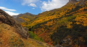 The Road Trip Through The Ruby Mountains In Nevada Will Take You Through Sheer Autumnal Perfection