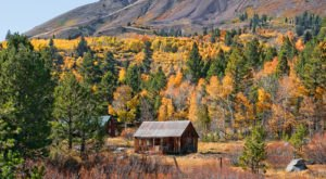 Hope Valley Is The Most Peaceful Place To Experience Fall Foliage In Northern California