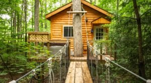 Live Out Your Childhood Dreams With A Stay At West Virginia's Tuscany Tree House