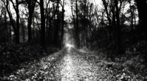 20 Acres Of Haunted Woods Await You At The Fright Trail In Louisiana