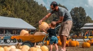 One Of The Best Fall Festivals Near Nashville Is Happening All Season Long At Honeysuckle Hill Farm