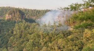 A Devastating Fire Has Destroyed Acres Of Kentucky's Red River Gorge