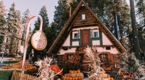 Pumpkins In The Pines Is One Of The Most Charming Fall Festivals In All Of Southern California