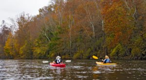Paddle Down The Etowah River During Georgia's Fall Foliage Season For A Natural Experience Like No Other
