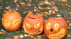 Help Carve More Than 2,000 Pumpkins At The Thomas Rees Memorial Carillon In Illinois