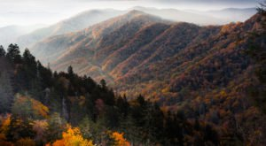 Plan A Whimsical And Memorable Trip To Gatlinburg, Tennessee This Fall