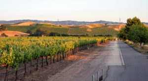 The Livermore Valley Is A Picturesque, Underrated Wine Destination In Northern California