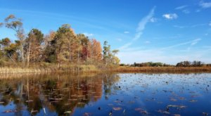 Visit Pontiac Lake In Michigan For An Absolutely Beautiful View Of The Fall Colors