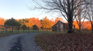 Plan A Memorable Autumn Camping Trip At Stokesville Campground In Virginia