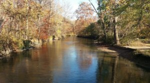 Paddle Down The Clinton River During Michigan's Fall Foliage Season For A Natural Experience Like No Other