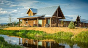 You Can Experience The Ultimate Farm Stay At ABC Acres In Montana