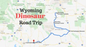 Take This Prehistoric Road Trip To See These 5 Dino-Mite Sites Across Wyoming