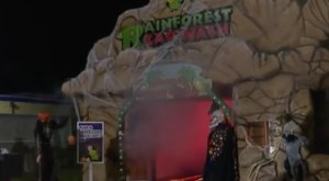 Oddly Enough, There's A Haunted Car Wash In Ohio And It's Just As Terrifying As It Sounds