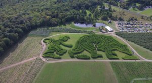 Get Lost In This Awesome 4-Acre Corn Maze In Maine This Autumn
