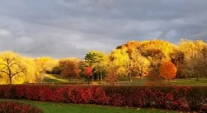 Explore Wyandotte County Park For A Fantastic Hike That Will Take You To Striking Fall Foliage In Kansas