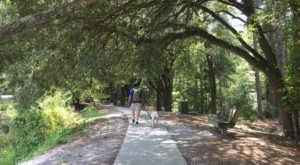 13 Fun Adventures You Can Have At South Carolina's Sesquicentennial State Park