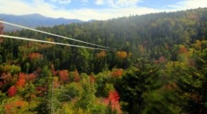 The Bretton Woods Canopy Tour In New Hampshire Is A Great Way To See The Fall Colors