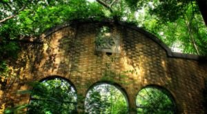 The Abandoned Chewaukla Bottling Factory Has Been Reclaimed By Arkansas Nature